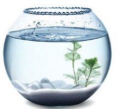 MiniDo - Fabriquer : - un aquarium boule