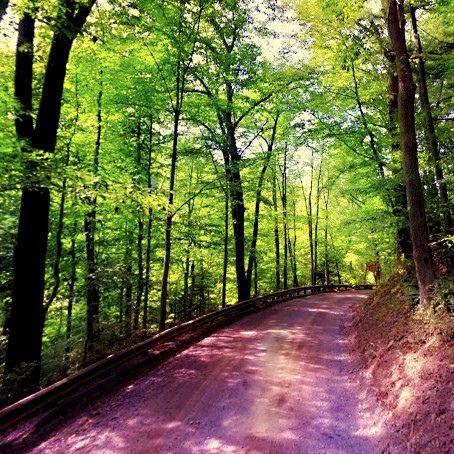 #HacklebarneyStatePark is located 8 miles to the south of Long Valley #NewJersey #dentist Cazes Family Dentistry LLC