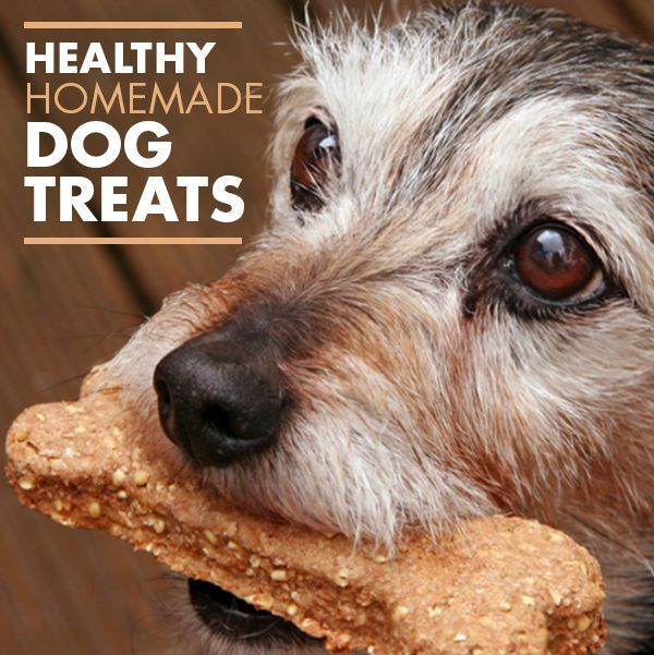 Healthy Homemade Dog Treats - Here's an easy recipe that's healthy too. These treats can be made soft or crunchy depending on how long they're baked. #dogfood #dogs #diy