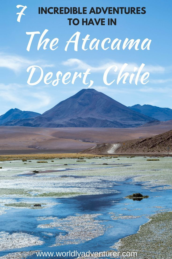 Check out these 7 incredible adventures to have in the Atacama Desert in Chile!