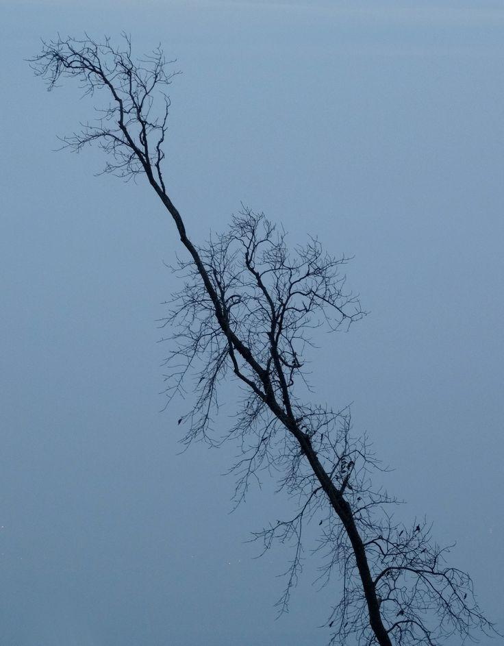 Prêt pour un long hiver, nov 2013
