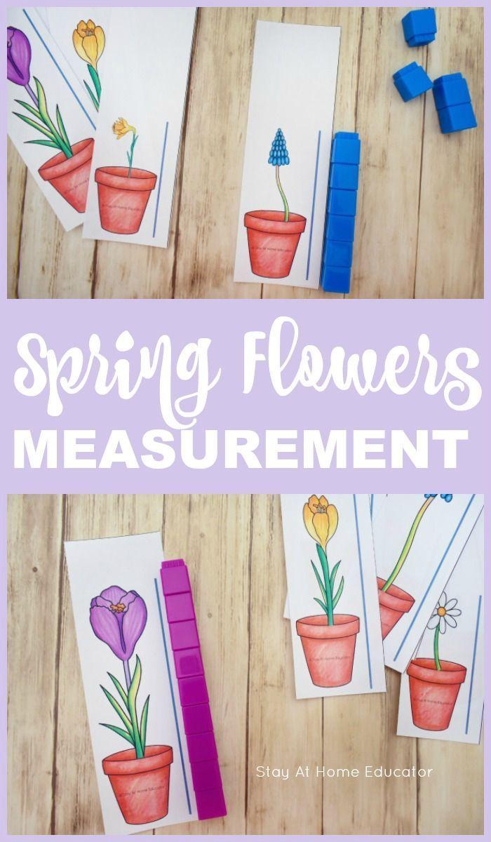 A Flower Themed Measurement Printable For Preschoolers Spring Theme Preschool Spring Preschool Activities Spring Kindergarten [ 1200 x 700 Pixel ]