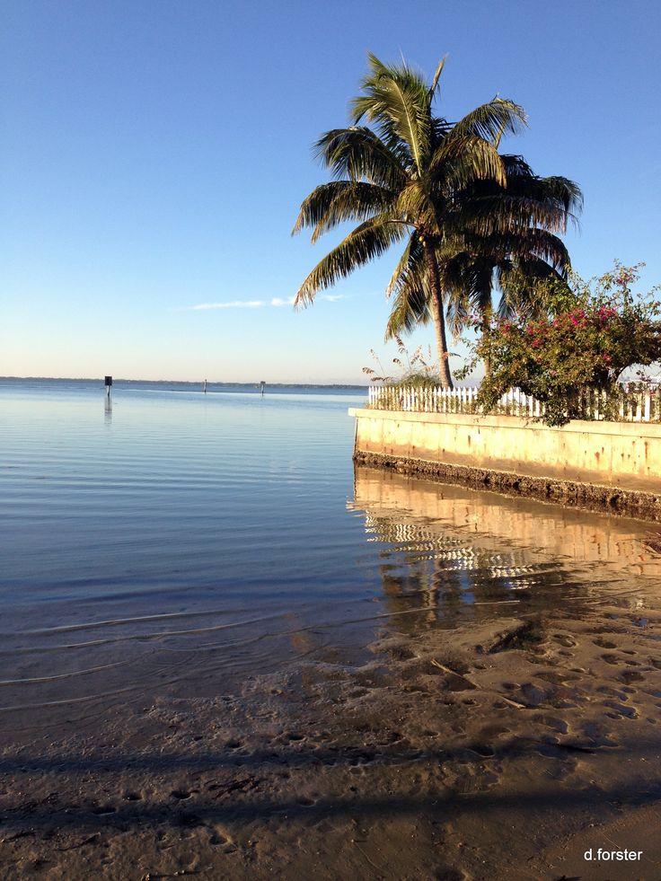 End of the road st james city florida bulkheadbob for Pine island fishing charters