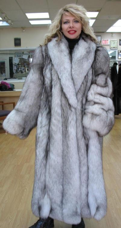 Blue Fox fur Coat   Drug of fur for furlovers in lack   Pinterest