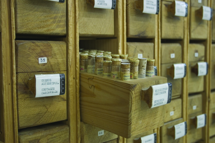 The pharmacy heritage.