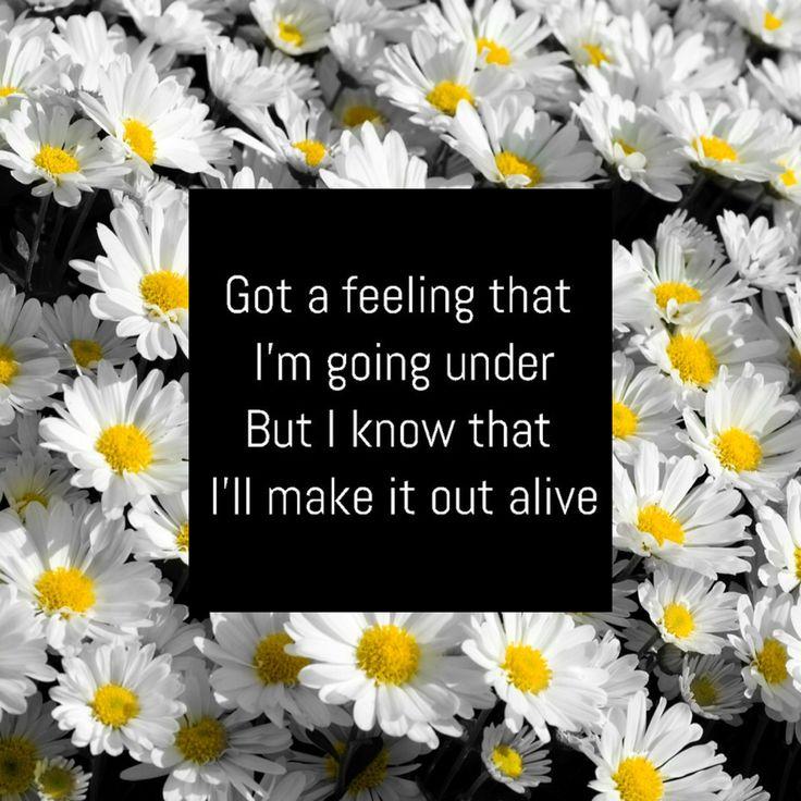 Lyrics stitches shawn mendes