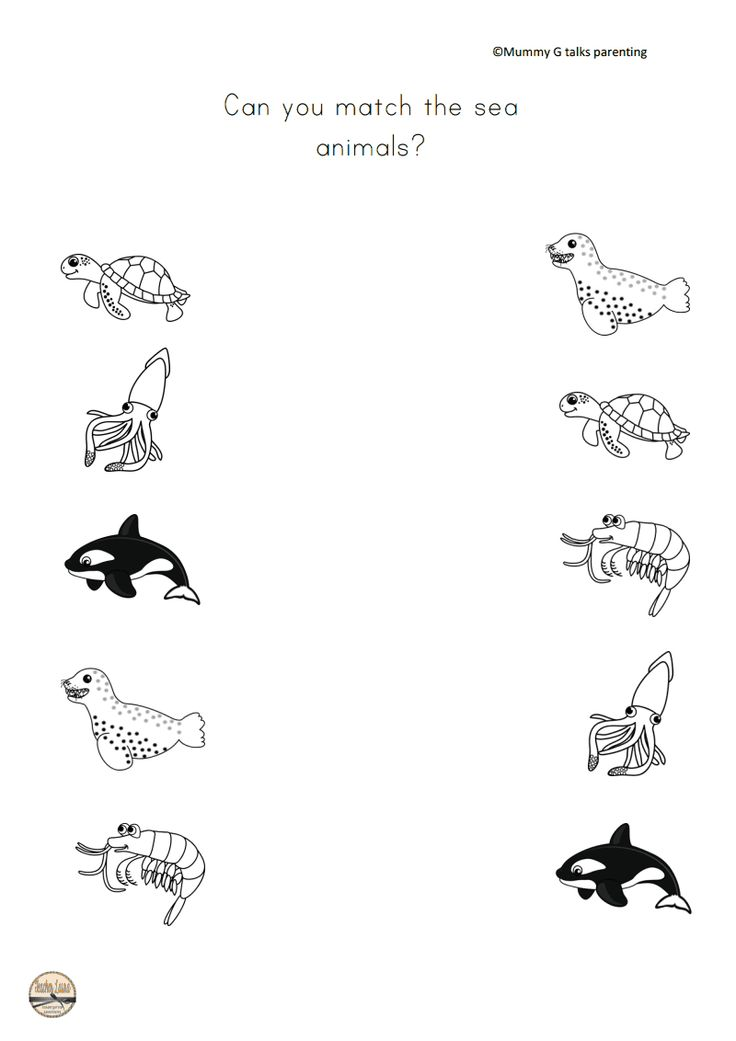 FREEBIE Under the sea themed animal matching worksheet