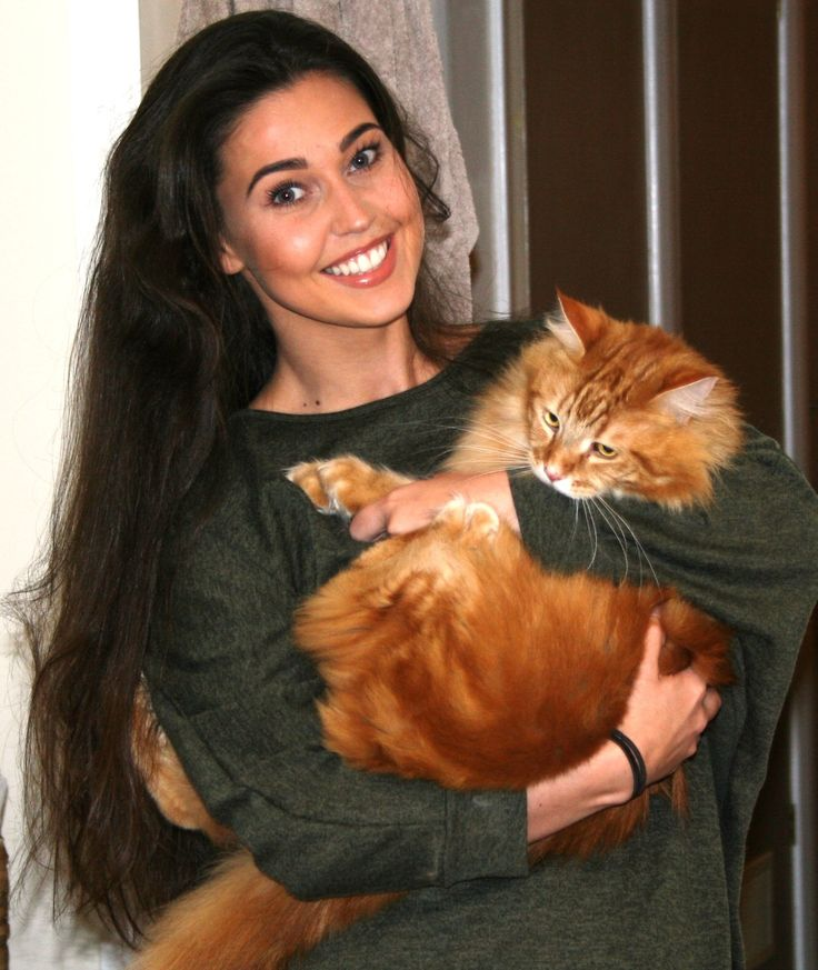 Aslan had been missing for five days when we started our investigation. An intensive search of the area together with strong canvassing led to a very reliable siting and his subsequent recovery from a garden 500 metres away from his home