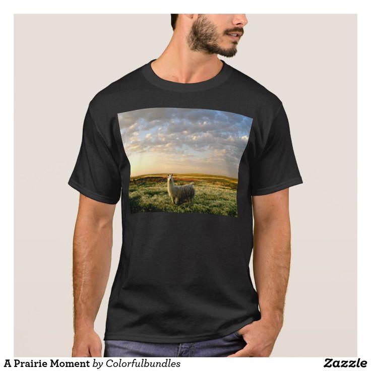 A Prairie Moment