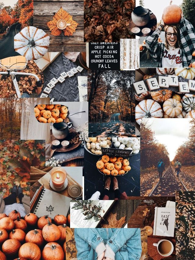W A L L P A P E R Wallpaper Fall Autumn Cute Fall Wallpaper Thanksgiving Wallpaper Iphone Wallpaper Fall
