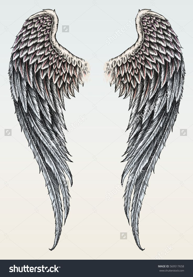hand drawn wings in tattoo style