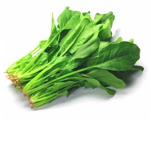 Farm fresh Spinach (पालक) buy online from Fresh Haat and get Free Home Delivery in Vasank Kunj, New Delhi, India