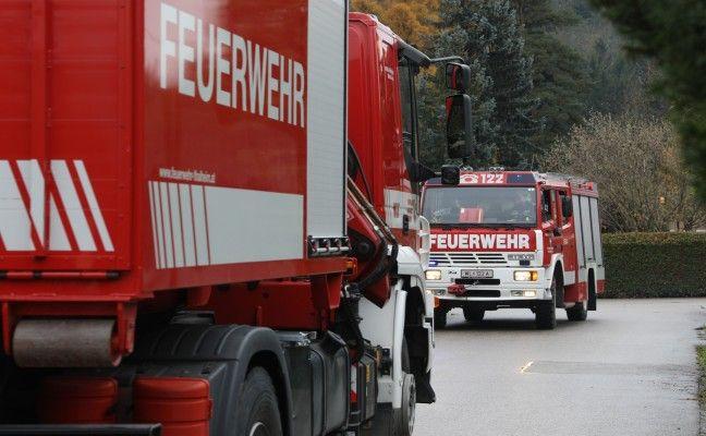 {Missglückte+Baumfällung+in+Thalheim+bei+Wels+erforderte+Unterstützung+durch+die+Feuerwehr}