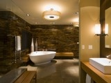 Saw this glass-walled bath in Luxe -- yes, the wood-looking walls are glass.