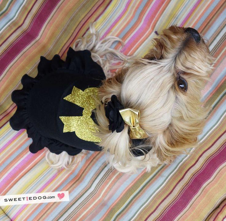Black Ribbon Dress www.sweetiedog.com #yorkie #yorkshire #dog #dress #dogclothe #ribbon