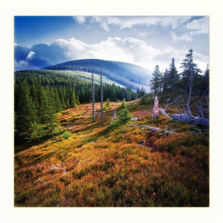 Montagnes de Sudety, en Pologne. Automne.