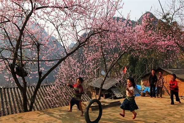 Vietnam's Spring Begins in March  The month of March sees temperatures rise in the northern parts of Vietnam, and if you are interested in exploring the natural environment such as in the Highland regions north of Hanoi, that is good news.