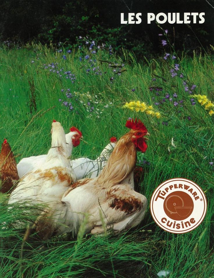 Les poulets (1984)