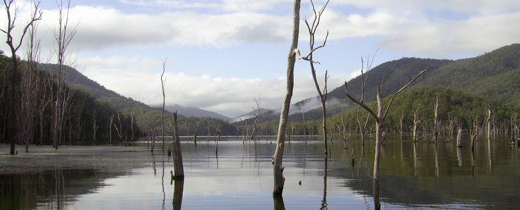 Lake Borumba, Gympie QLD.  Freshwater fishing!