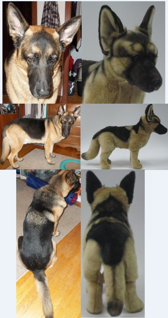 Custom stuffed animals made to look just like your pet! We