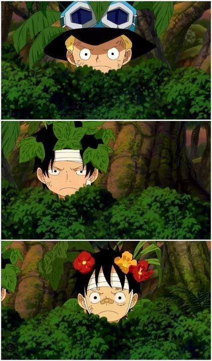 """Sabo: """"Be the leaves..."""" Ace: """"Be the leaves....."""" Luffy: """"Be the flowers..."""" I love their attempt to camouflage. It's even funnier because you can kinda tell what type of people they are just by this. XD    WAIT ACE ISNT THAT POISEN IVY?!"""