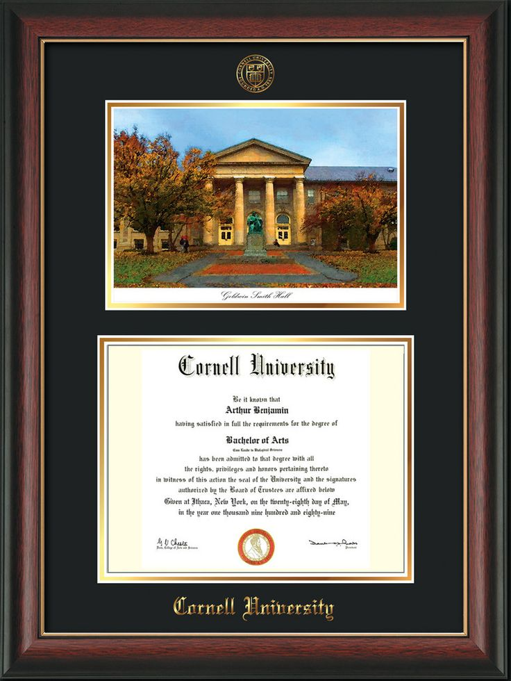 Cornell U Diploma Frame-Rose Gold Lip-Goldwin Photo-Black on Gold mat – Professional Framing Company