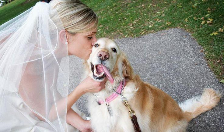 Non innamoratevi mai di una donna che ama e conosce i cani. Lei È pazza. Lei crede nell'amore vero. Crede che tornando da lavoro ci sia qualcuno che nonostante la giornata pesante sia lì, ad aspet...