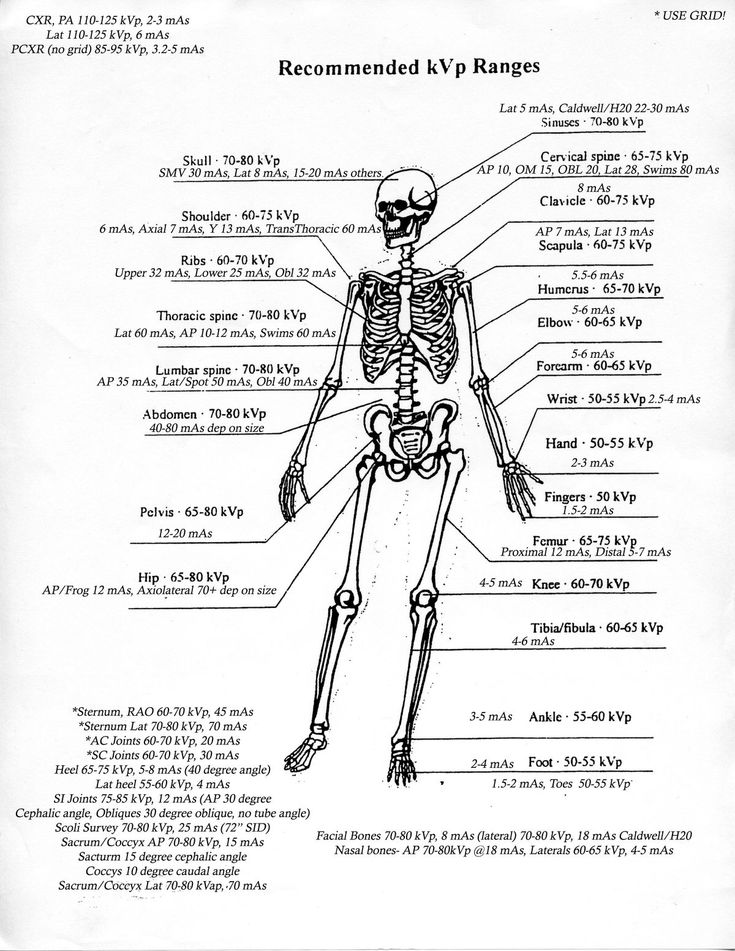 56 best Radiology images on Pinterest Nursing schools, Nursing - radiographer resume