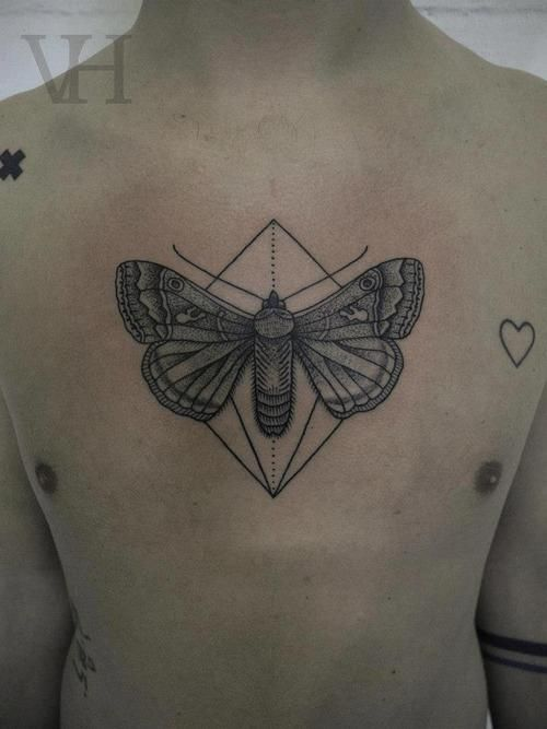 27 best images about moth tattoo on pinterest harry for Ink fiends tattoo whittier