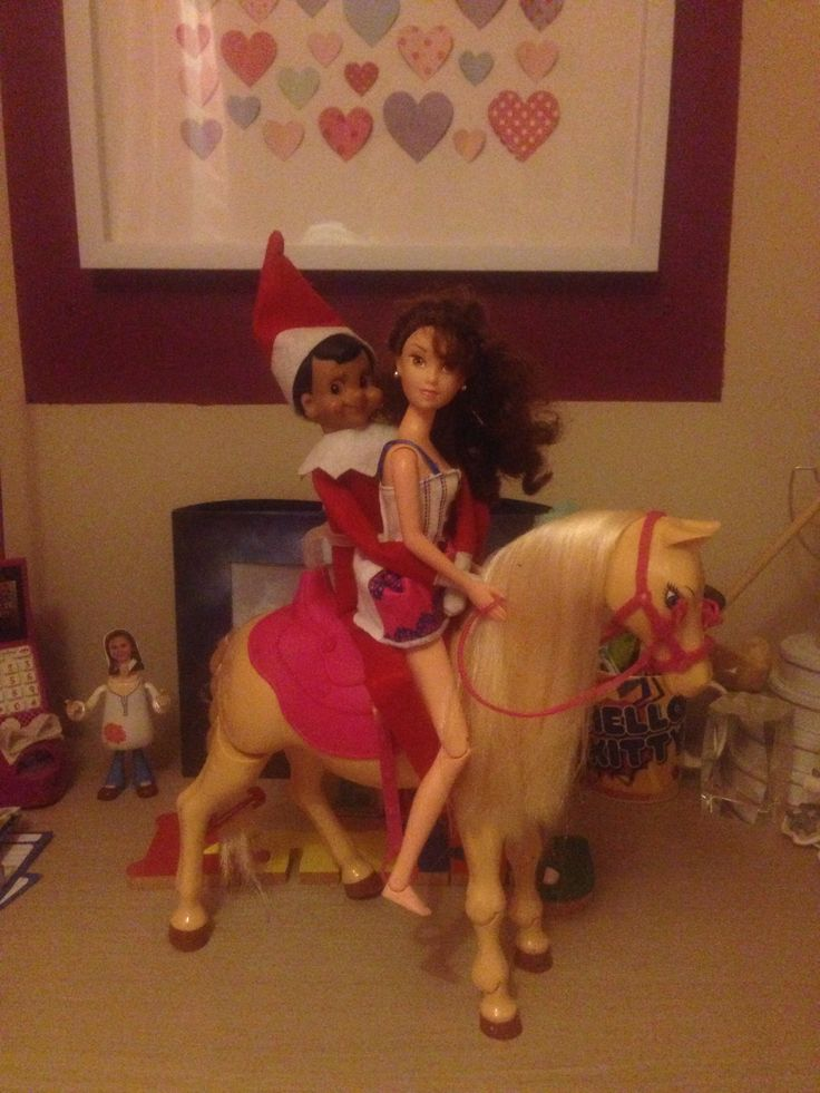 Eliot brought a guest home last night - on a horse no less!