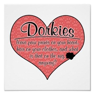 I love my dorkie!Dorky Paw,  Plectron,  Plectrum, Dogs Humor, Dog Humor, Paw Prints, Furries Friends, Prints Dogs, Dogs Life