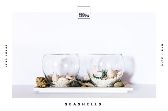 Seashells | Hero Images by Digital Infusion on @creativework247