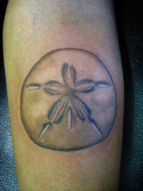 best 25  sand dollar tattoo ideas on pinterest