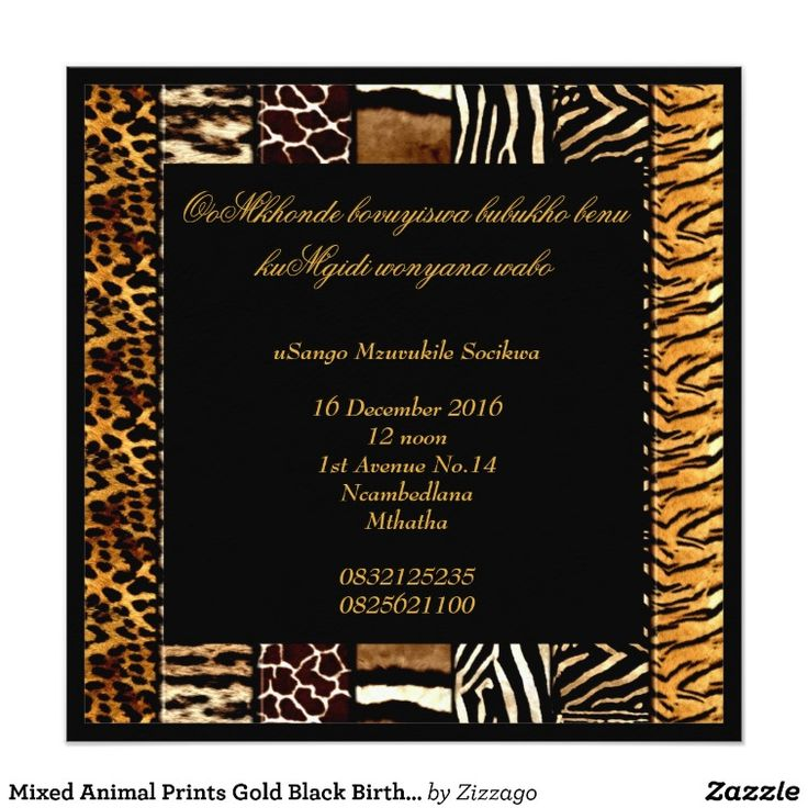 Mixed Animal Prints Gold Black Birthday Party Card