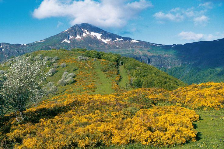 Le puy Mary est un sommet des monts du Cantal, vestiges du plus grand stratovolcan d'Europe. Il culmine à 1 783 mètres d'altitude.  Le site a été classé Grand site de France sous le nom de Puy Mary, volcan du Cantal en décembre 2012.  Blogues » LE PUY MARY » Ma Planète PPS / DIAPORAMA gratuit a telecharger