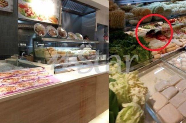 Buang Semua Makanan Gara-Gara Tikus   Tikus amat licik dalam mencuri makanan di dapur sehingga kita sendiri tak perasan mereka sudah berkeliaran di bahagian penyimpanan makanan.  Baru-baru ini sebuah gerai di medan selera pusat membeli-belah diarah tutup dan buang semua makanan kerana tikus berkeliaran di atas makanan yang dijual.  BACA: Terpaksa Makan Makanan Tikus Untuk Hidup  Kejadian berlaku pada 3.45 petang di medan selera Food Republic pusat membeli-belah One Utama Petaling Jaya itu…