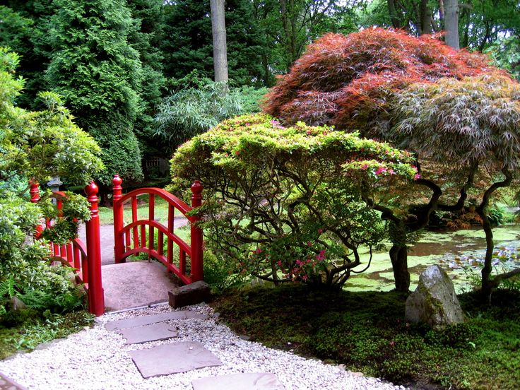 red bridge for japanese garden design with stone walk way