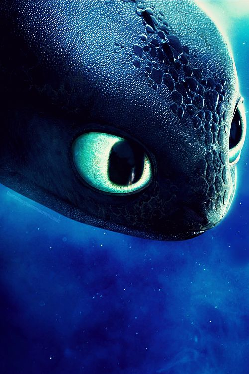 Toothless the Dragon ★ Yeah.. I like dragons too!