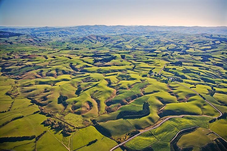 Tapanui Country, see more, learn more, at New Zealand Journeys app for iPad www.gopix.co.nz