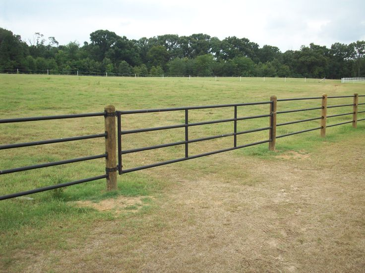 Need an appealing, yet functionable fence? Check out the Priefert Ponderosa Fence