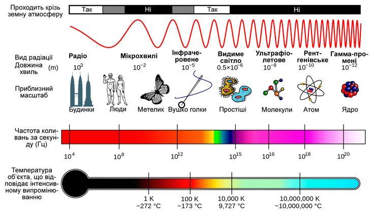Види радіації інфографіка