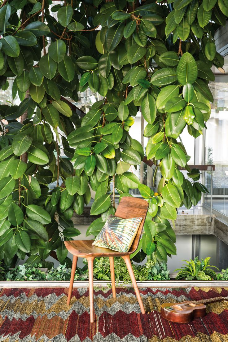 Chair Milo, Cushion Jungle by Pfister, Tropical Retro,  Indoor Ideas, Outdoor, Furnishing and Decoration Ideas, Decoration, Beautiful Flowers, Old Guitar