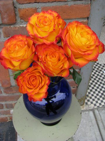 Circus roses in a cobalt vase.  A row of these down the center of a table would be fabulous. An easy DIY