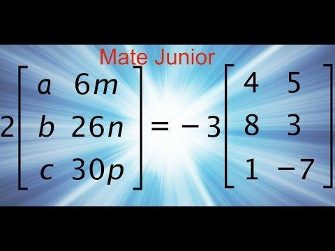 Ejercicio de multiplicacion de una matriz por un escalar. Sigueme en facebook y YouTube como Mate Junior