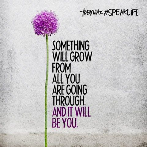 something will grow from all you are going through and it will be YOU