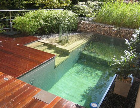 Awesome naturally filtered pool design: Swim Ponds, Small Pools, Swimpool, Natural Swim Pools, Natural Home, Wood Decks Design, Natural Pools, Backyard Pools, Pools Design