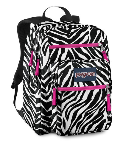 Hiking Backpack Walmart