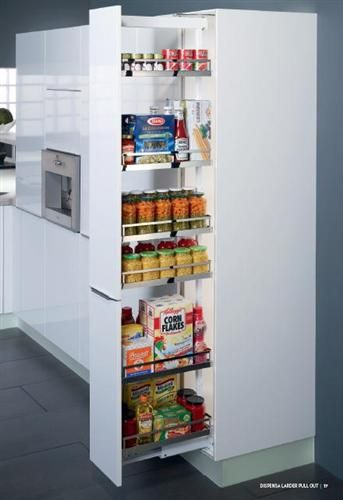Kitchen Must Have Pull Out Pantry Designs Cabinets