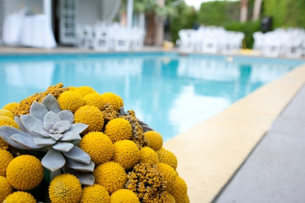 yellow!: Billy Ball, Colors Theme, Yellow Bouquets, Classic White, Yellow Ball, Ball Bliss, Parties Ideas, Flowers, Floweri Ideas