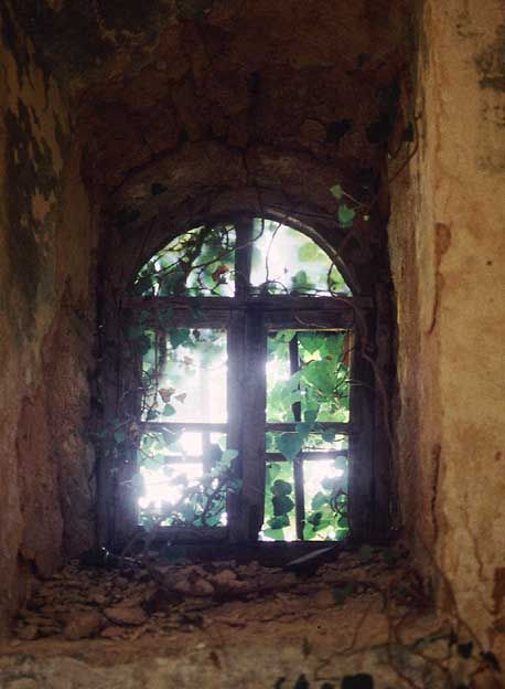 Old window, Corfu by jonathan charles photo on Flickr.
